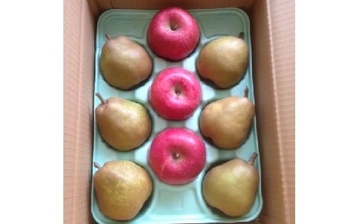 0007-2007 りんごとラ・フランス詰合せ 3kg 特秀品 贈答用
