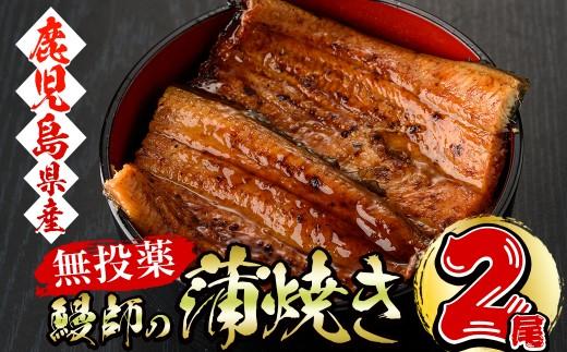 a3-066 【無投薬】鰻師の蒲焼き 大2尾セット