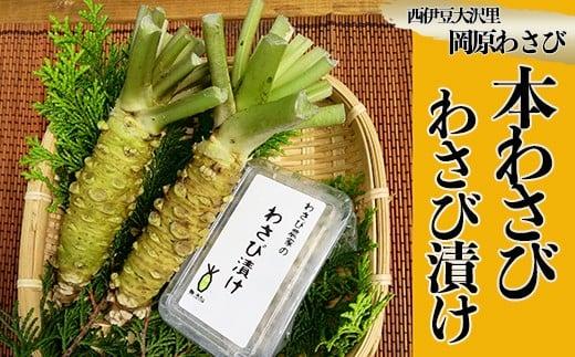 【世界農業遺産認定】西伊豆町の本わさび・わさびづけセット