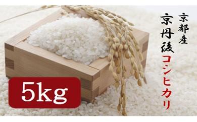 令和3年度 京丹後コシヒカリ 5kg