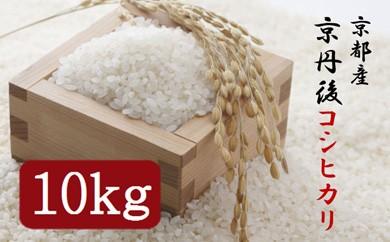【ギフト用】令和3年度 京丹後コシヒカリ 10kg