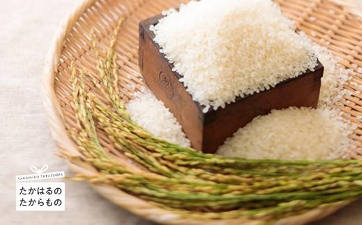 特産品番号420 高原町産 杜の穂倉 小清水栽培米 (ひのひかり) 10kg