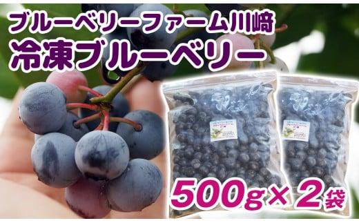 冷凍ブルーベリー1kg ブルーベリーファーム川﨑<1-118>