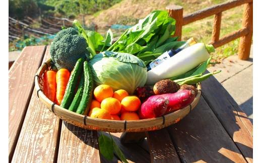 野菜・果物の詰合せ【40pt】