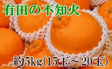 【濃厚】有田の不知火約5kg(15玉~20玉)