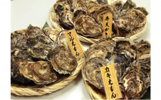 [№5863-0369]厚岸産『マルえもん』『カキえもん』『弁天かき』3種食べ比べセット