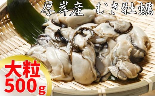 [№5863-0315]【10月から配送】厚岸産むき牡蠣(大粒・500g)