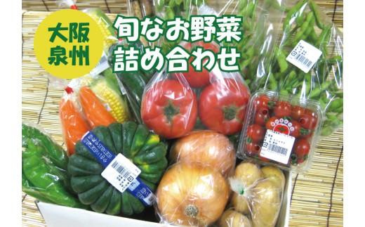 泉州産 季節の 野菜 詰め合わせ セット小_0011