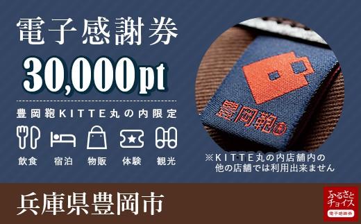 豊岡市 電子感謝券 30,000ポイント
