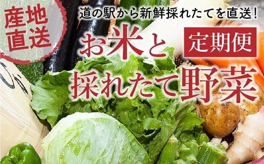 【全4回】道の駅からお届け!お米と採れたて野菜定期便 013-15