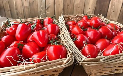 増量2kg!甘さ抜群!!トマト嫌いでも食べられるトマトベリー H004-056