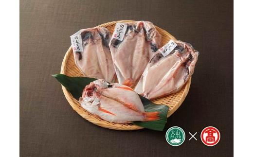 日本海西部産 開きのどぐろ干物4枚(大山ブランド会)高島屋 タカシマヤ 0293.20-N1
