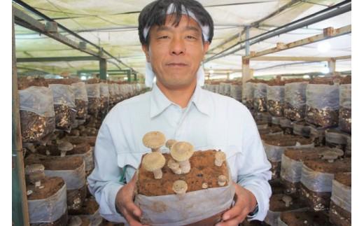 生産者の中田さん。今日も丹精込めて美味しい野菜を作っています。