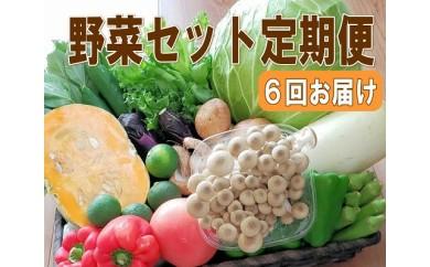 【定期便 / 全6回:奇数月お届け】旬の新鮮野菜セットB(たっぷり15品以上)