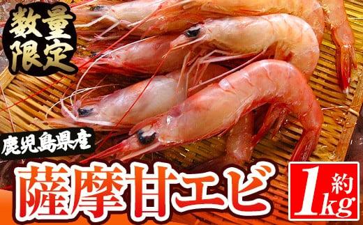 薩摩甘エビ 1.0kg