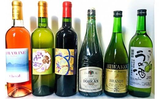 [№5900-0265]ワイン・ブランデー・梅酒セット