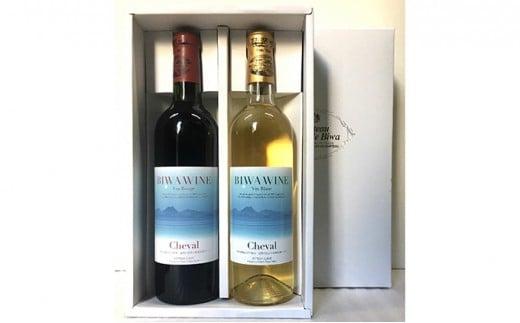 [№5900-0268]BIWA・ワインセット