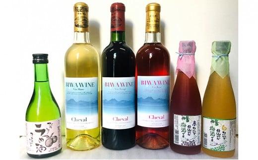 [№5900-0267]BIWA・梅酒セット