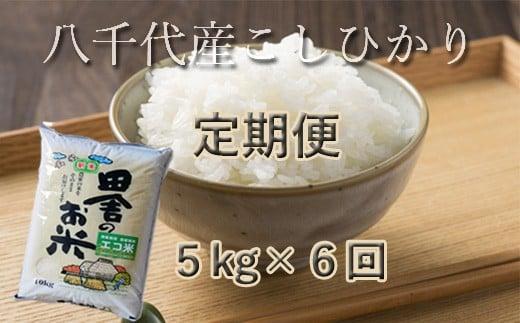 TT-2【定期便】八千代産コシヒカリ【エコ米】5kg×6回