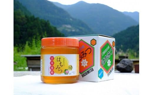 徳島県産天然はちみつ(600g)