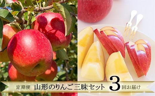 FY19-641 【定期便3回】 山形のりんご三昧セット