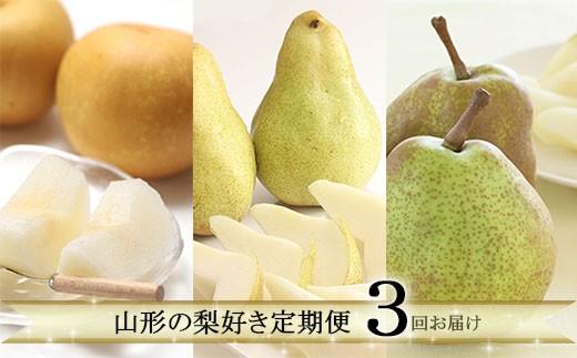 FY19-637 【定期便3回】 山形の梨好き定期便