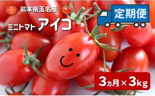 AH5 ミニトマト アイコ 【3ヶ月定期便】