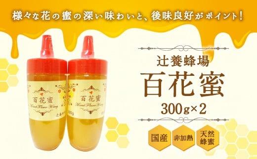 辻養蜂場 百花蜜 300g×2