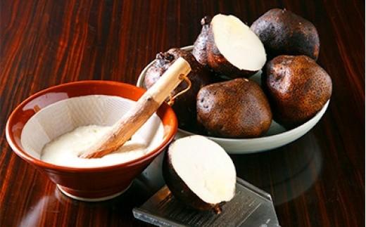 大和万葉の里「山の芋」 約1.2kg【1071903】