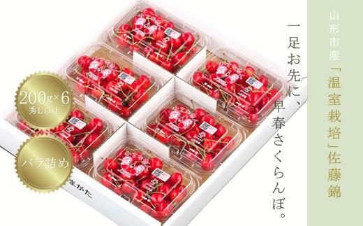FS18-226 温室栽培 山形市産「佐藤錦」秀L200g×6パック