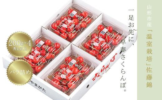 FS18-230 温室栽培 山形市産「佐藤錦」秀L200g×4パック