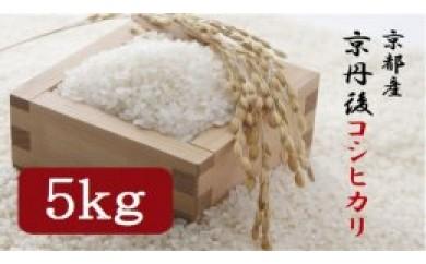 【半年間お届け】京丹後コシヒカリ5kg 月1回×6カ月