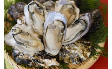 殻付き生牡蠣 3kg【漁師直送!】