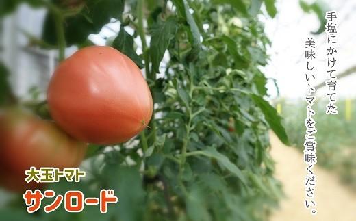 AP-2 【数量限定】大玉トマト(サンロード)4kg
