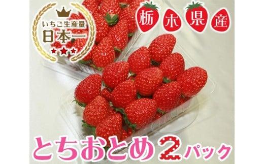 No.057 栃木県下野市産 とちおとめ(2パック) / いちご 苺 イチゴ 果物 栃木県