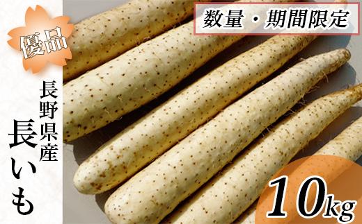 長野県産【優品】長いも10kg