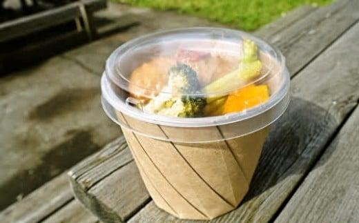 O-10 【紙&プラスチック製食品容器】おりがみランチセット☆おすすめ