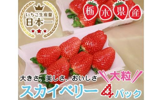 No.060 栃木県下野市産 スカイベリー(4パック) / いちご 苺 イチゴ 果物 栃木県