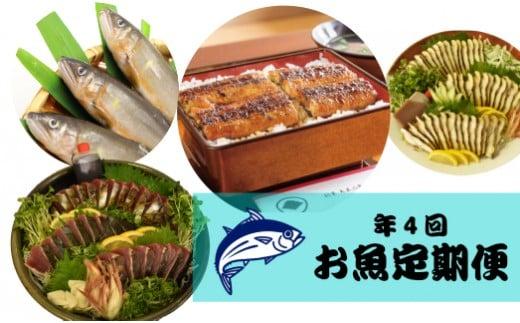 <限定30セット>年4回【さかわのお魚定期便】