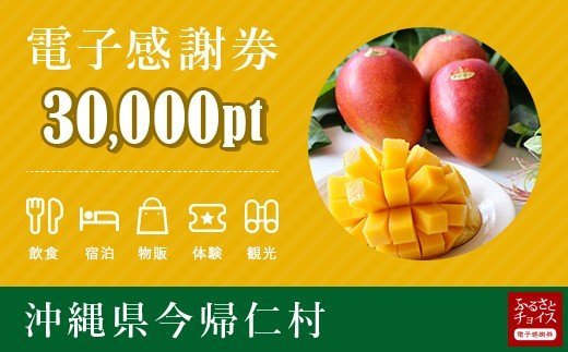 今帰仁村 電子感謝券 30,000ポイント