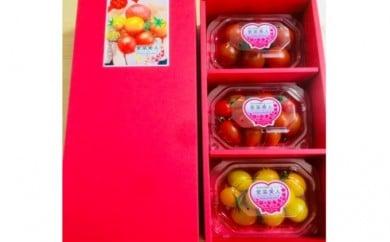 フルーツトマト3品種・全3パック<『愛菜美人』ゴールド規格> 【11218-0004】