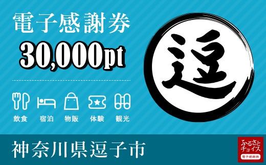 [№5875-0393]逗子市 電子感謝券 30,000ポイント