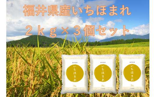 1160 【11月発送分】福井が生んだブランド米「令和2年福井県産いちほまれ」2kg×3
