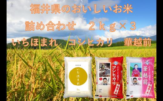 975 【11月発送分】福井米2kg詰め合わせ3種「いちほまれ・コシヒカリ・華越前」
