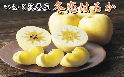 【数量・季節限定】岩手が生んだ究極のりんご『冬恋はるか』2.5kg ≪予約受付≫【570】