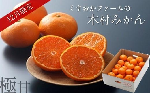 V3 【数量限定50・12月発送】高級品種木村みかん(5kg/熊本県玉名産)
