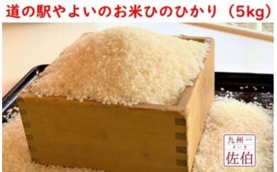 道の駅やよいのお米ひのひかり(5kg)
