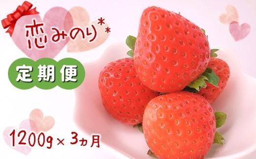 BL12 【定期便】熊本たまな産 「恋みのり」 (300g×4パック)×3カ月