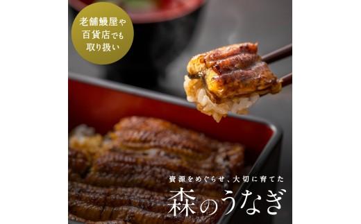 <A36森のうなぎ手焼き蒲焼 東西食べ比べ2尾セット>
