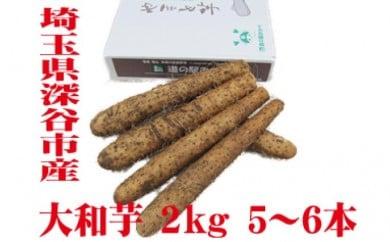 土付き大和芋AA品2kg(5~6本) 【11218-0137】